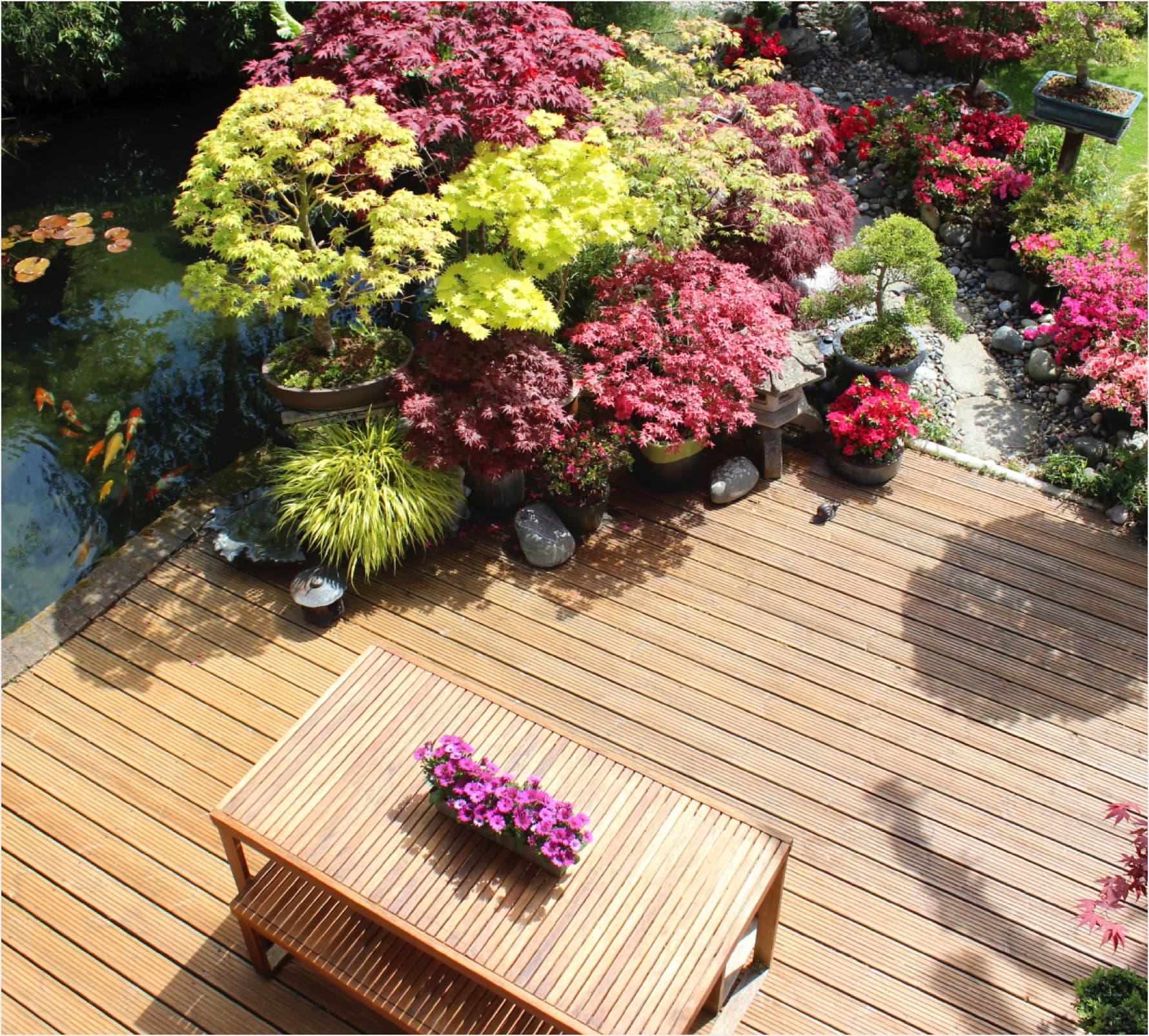 Landscaping – Eco-Verdure- Outdoor living spaces designer