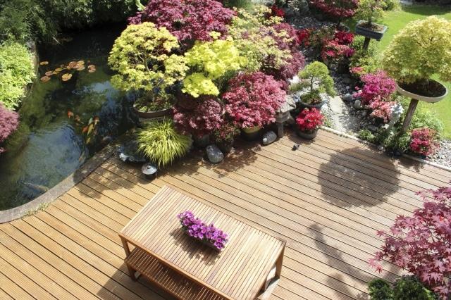 Les jardins d'eau miniatures