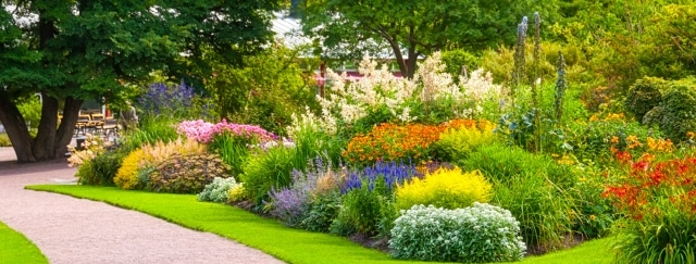 Garden and flowerbed care