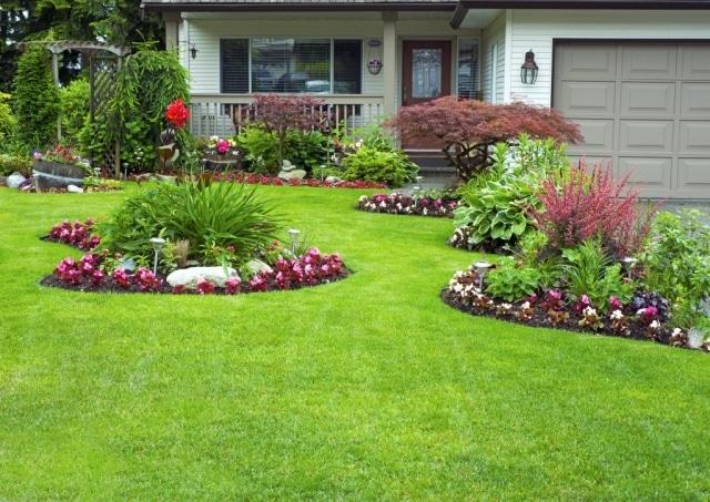 Et si les végétaux pouvaient augmenter la valeur de votre propriété?