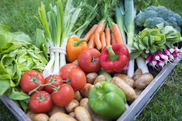 Les jardins comestibles: on les fait pousser, pourquoi ne pas les manger?